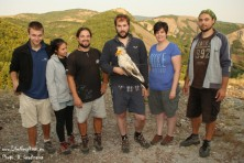 The team of BSPB and RSPB with the tagged vulture Boris.