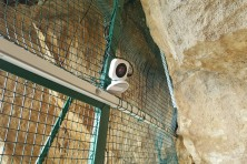 Installing nest camera for permanent observation (photo: I. Klisurov / Green Balkans)