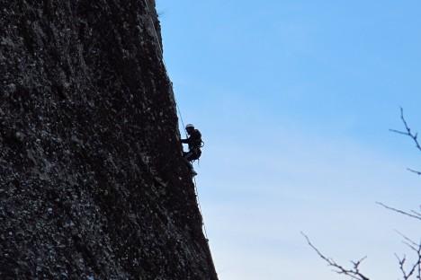 Climbing down to the nest (HOS/V. Saravia)