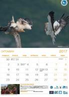 Calendar 2017 (in Bulgarian)