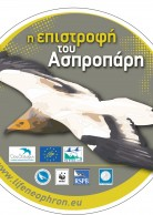 Sticker in Greek