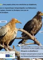 Local Awareness Poster for Greece (2012) - HOS version
