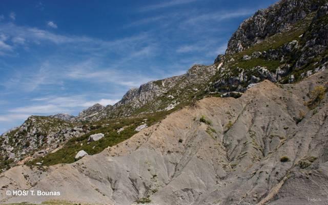SPA Paramythia mountains, Kalamas and Acherontas gorge (HOS/N. Bounas)