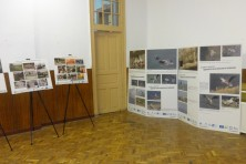 The traveling exhibition and the photo exhibition for the Egyptian vulture are in the History Museum – Byala cherkva