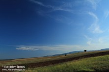 SPA Sakar (photo: S. Spasov)