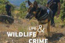 LIFE and wildlife crime
