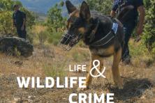 Програма LIFE и престъпленията срещу дивата природа