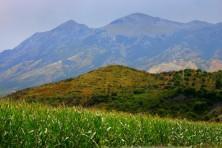 Landscape in southern Albania (BSPB/S.Nikolov)