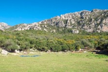 Area assessed as suitable for the establishment of a feeding station for the Egyptian Vulture in Epirus, Greece