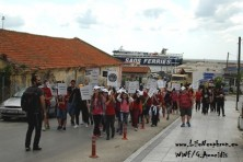 Students from Soufli and Tychero near the Alexandroupolis port