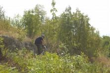 Почистване на площадката за лешоядите (сн. С. Николов / БДЗП)