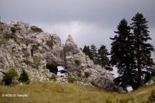 GR1440006_Koziakas_Tripio_Lithari (HOS/D. Vavylis)