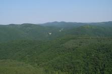 SPA Kamchiiska planina 2 (photo:D. Dobrev)