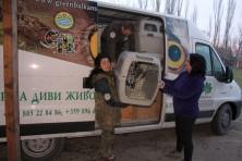 © Green Balkans