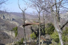 Platforms for supplementary feeding of Egyptian vultures in Greece / WWF