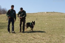 An anti-poison unit with a specially trained dog joins the poison detection efforts in Kresna, Bulgaria