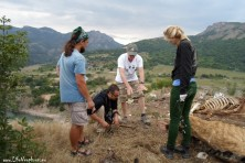Mike McGrady is helping the BSPB team with his expertise on trapping and tagging vultures in Eastern Rhodopes.