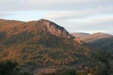 SPA South forest complex Evrou (WWF/G. Mercier)