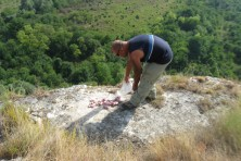 Does guarding and feeding increase productivity and survival of Egyptian Vultures in the Balkans?