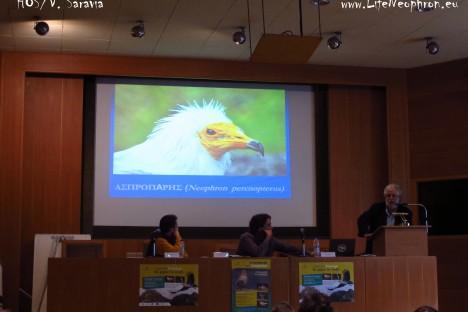 Workshop for the Egyptian Action Plan in Greece (HOS/V.Saravia)