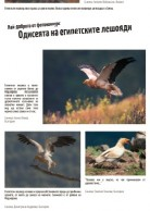 Mobile exhibiton with photos from the photo competition The Egyptian Vultures Odyssey