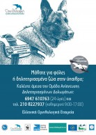 Antipoison Poster for Greece (HOS/BirdLife Greece Team)_2015